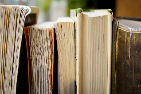 Libros de perfil sobre un estante.