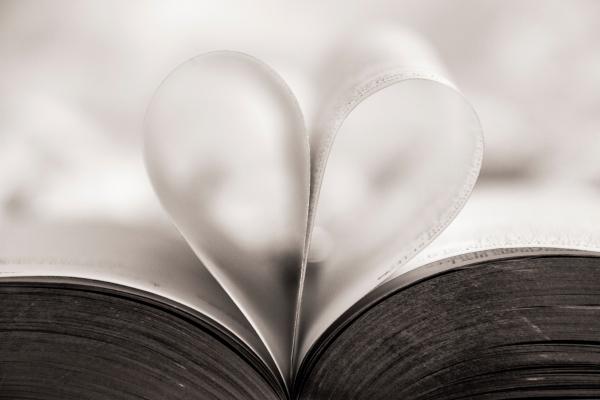 Hojas de libro con forma de corazón